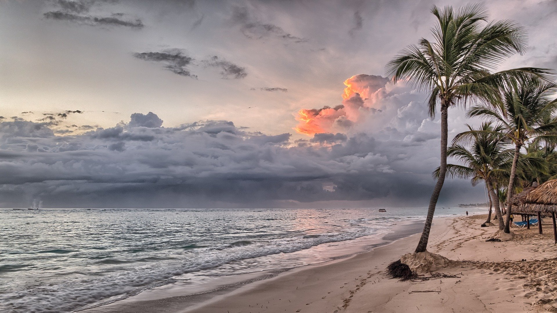 Découvrir la Martinique à votre rythme au meilleur prix 1